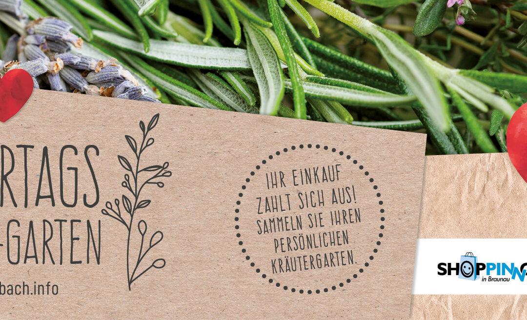 Muttertagsaktion – Sammeln Sie Ihren persönlichen Kräutergarten